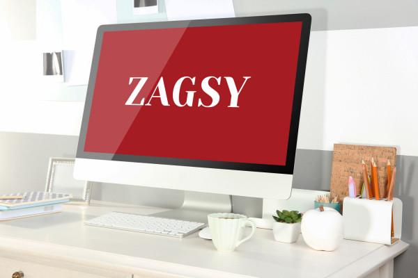 Sample branding #1 for Zagsy