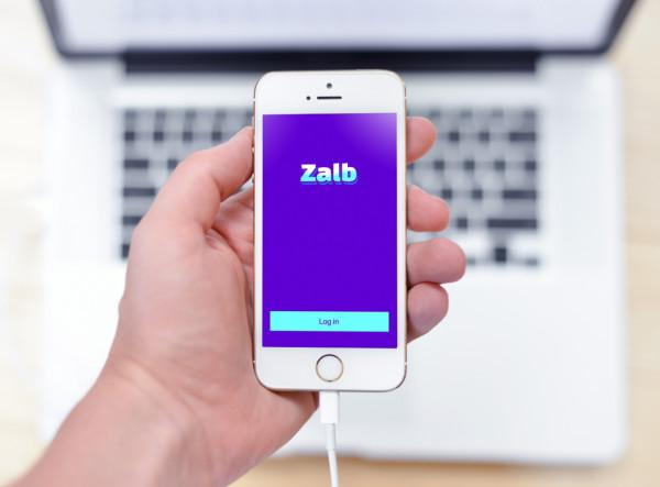 Sample branding #3 for Zalb