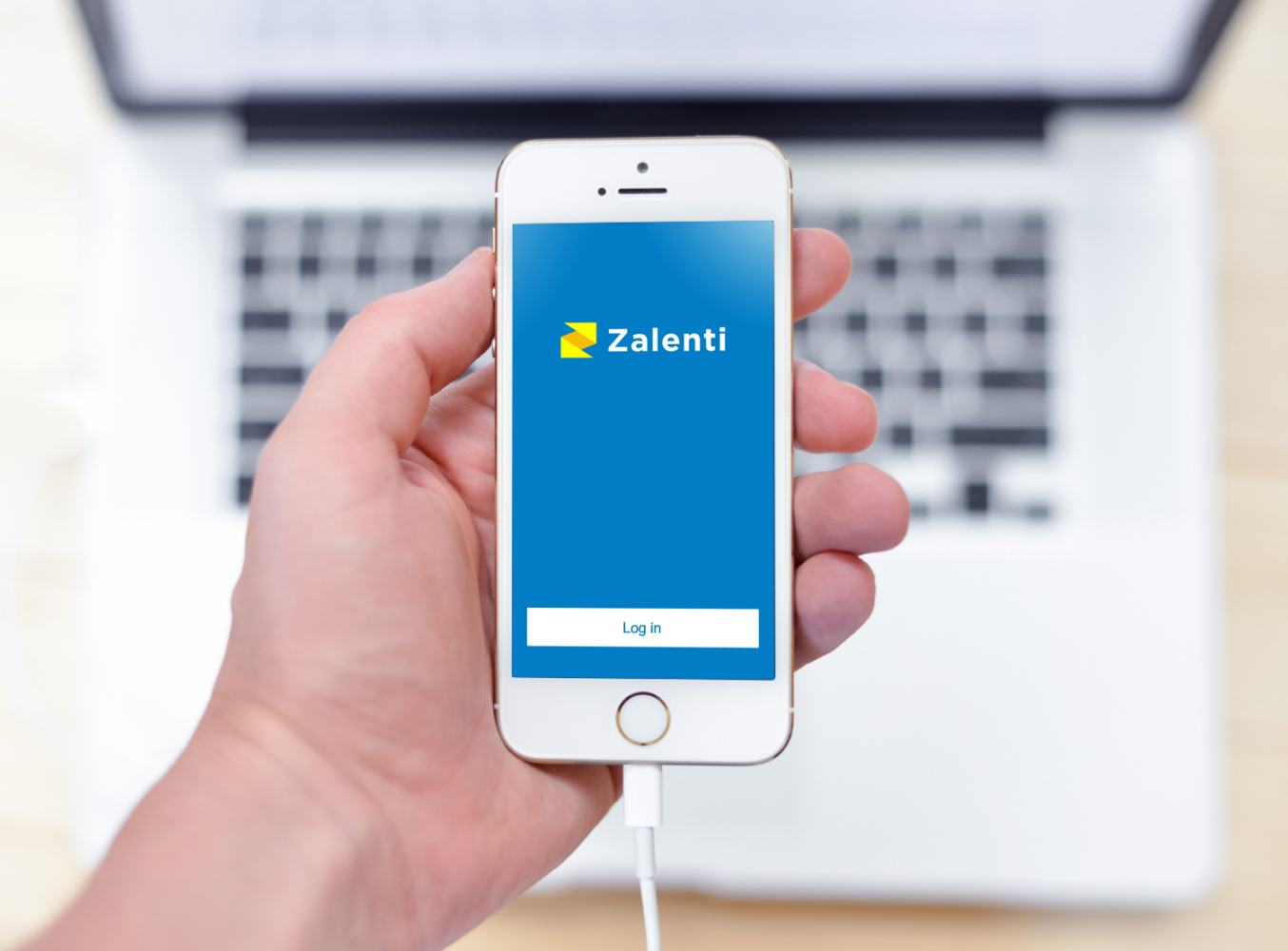 Sample branding #2 for Zalenti