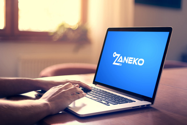 Sample branding #1 for Zaneko