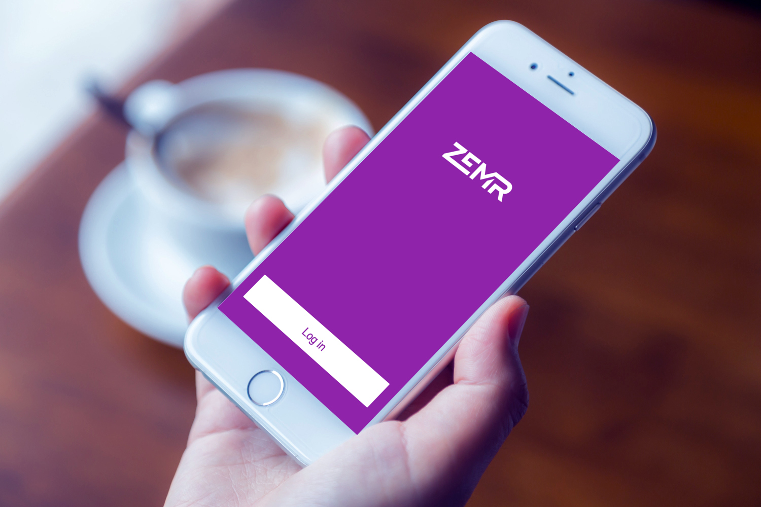 Sample branding #2 for Zemr