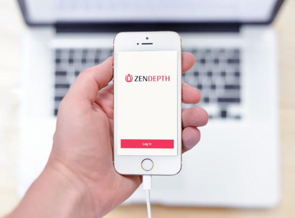 Sample branding #1 for Zendepth