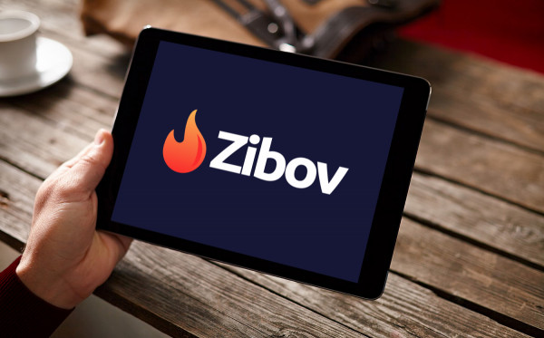 Sample branding #1 for Zibov