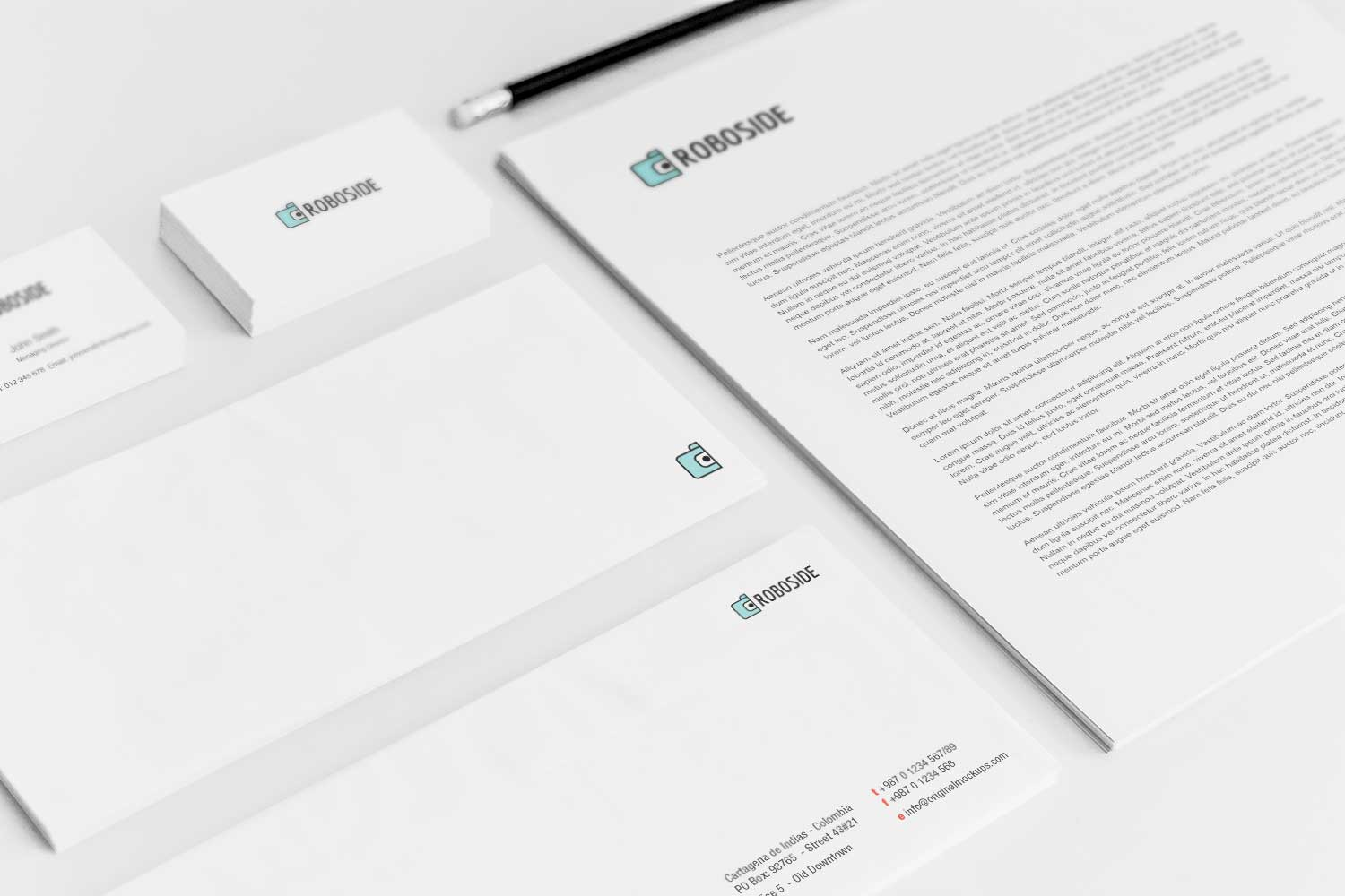 Sample branding #3 for Roboside
