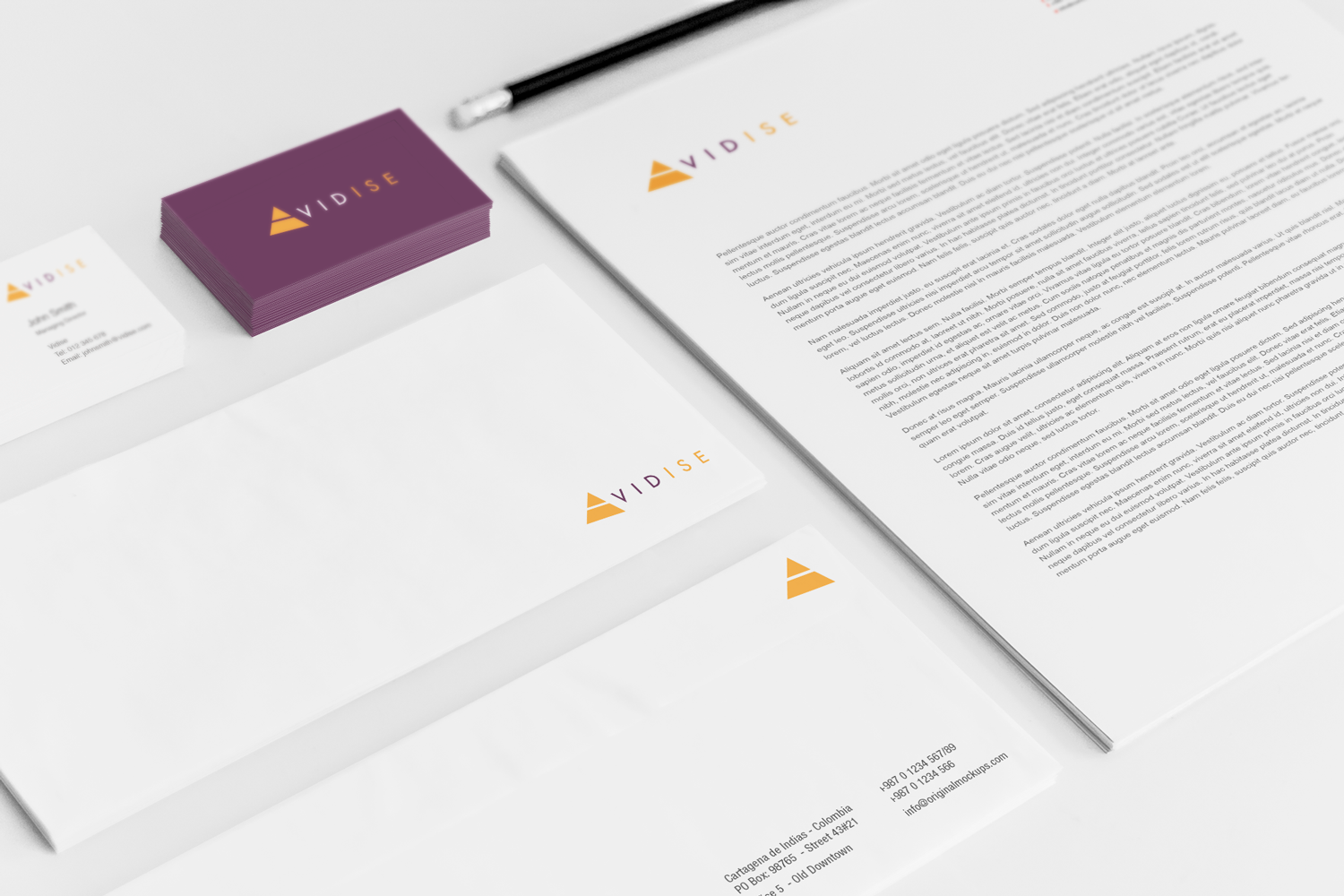 Sample branding #3 for Vidise