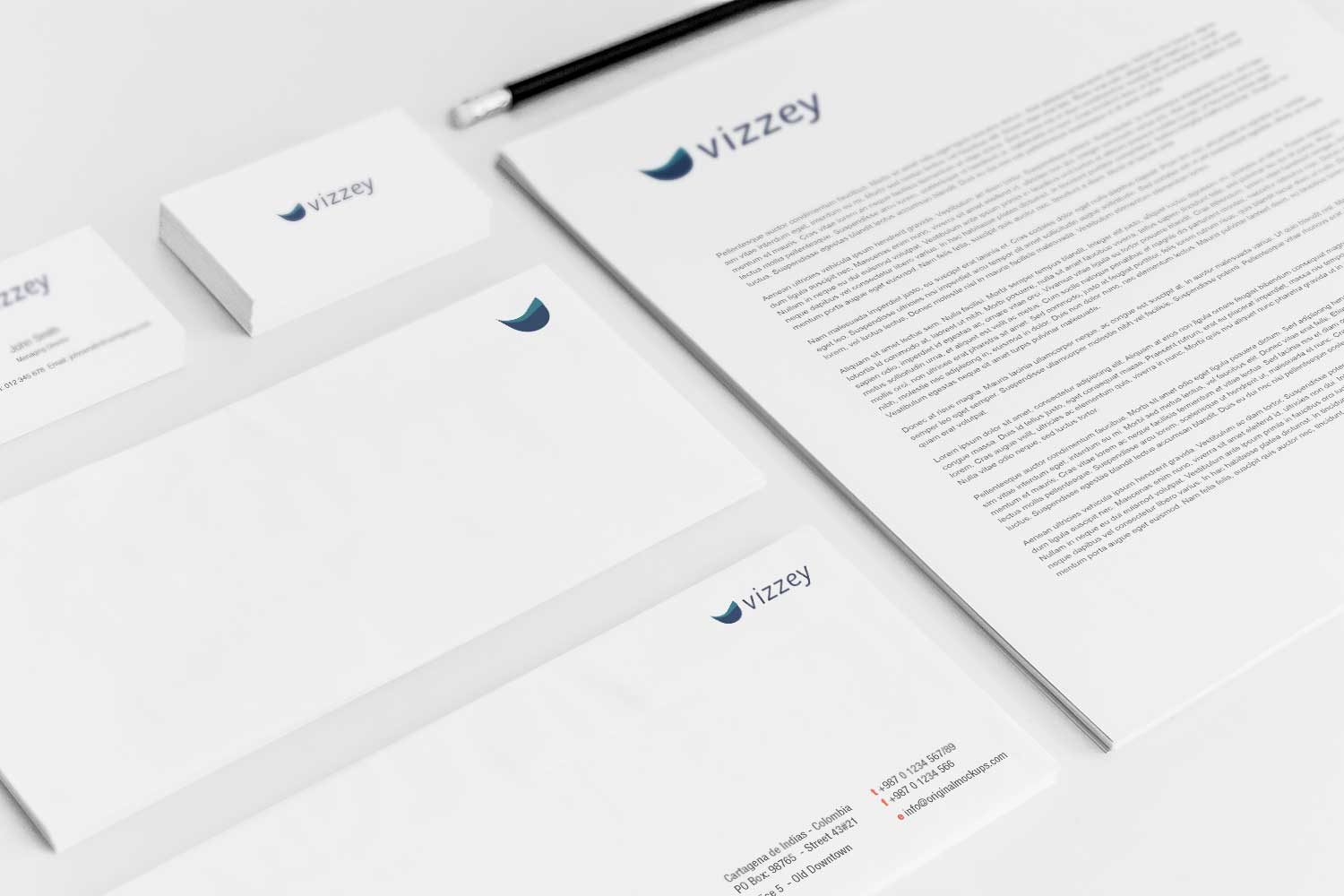 Sample branding #3 for Vizzey