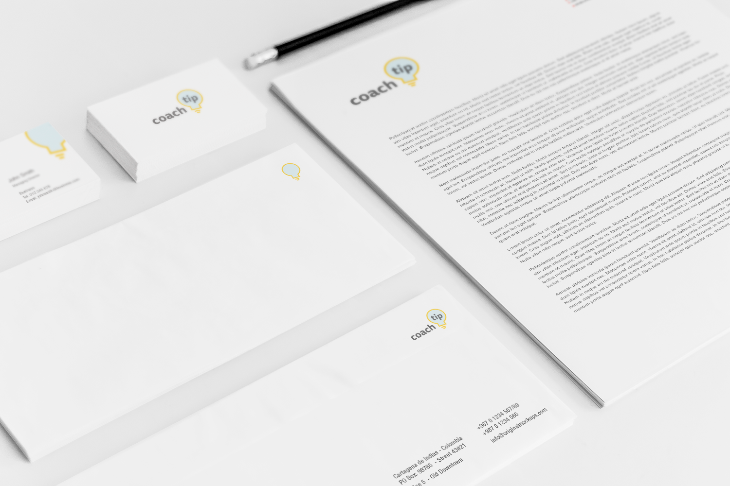 Sample branding #3 for Coachtip