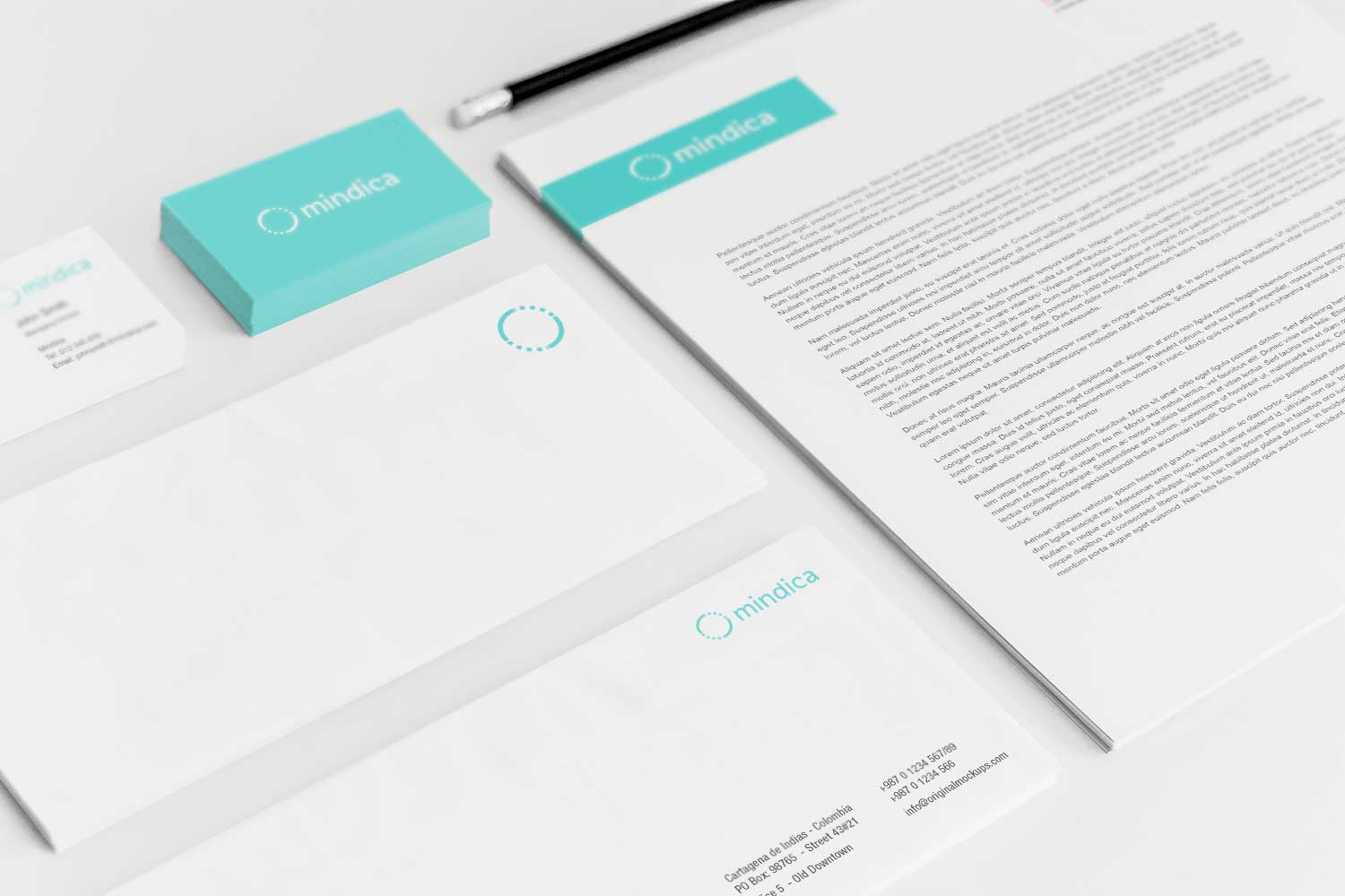 Sample branding #3 for Mindica
