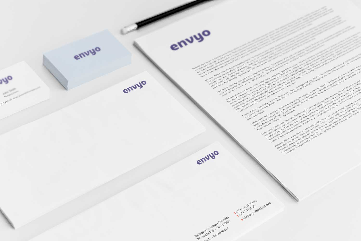 Sample branding #3 for Envyo