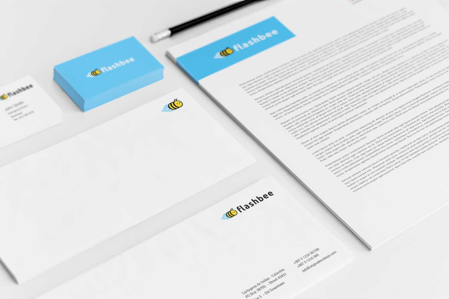 Sample branding #3 for Flashbee