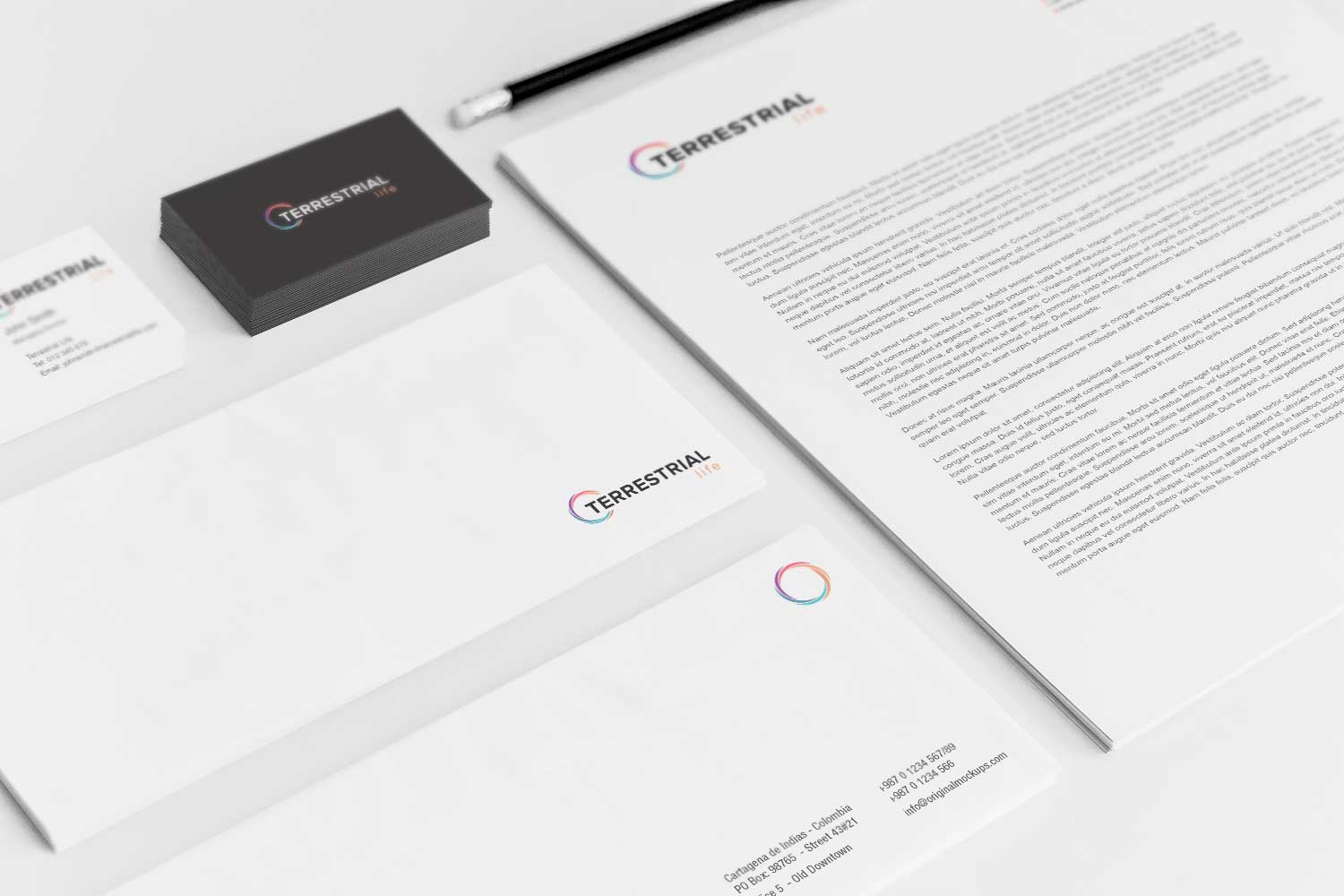 Sample branding #3 for Terrestrial