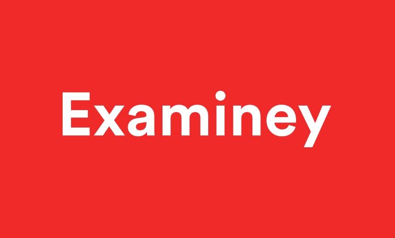 Examiney - Finance company name for sale