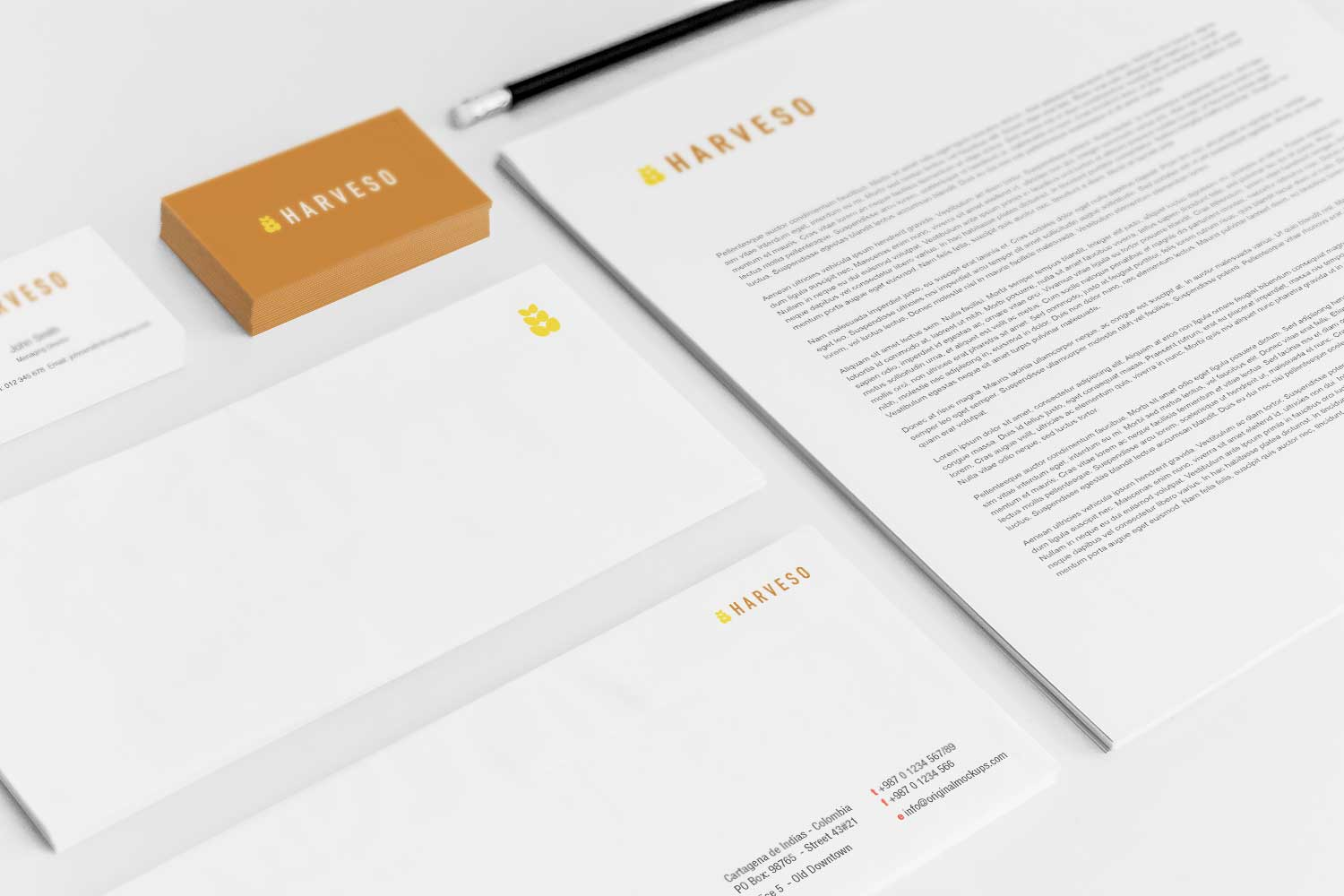 Sample branding #3 for Harveso