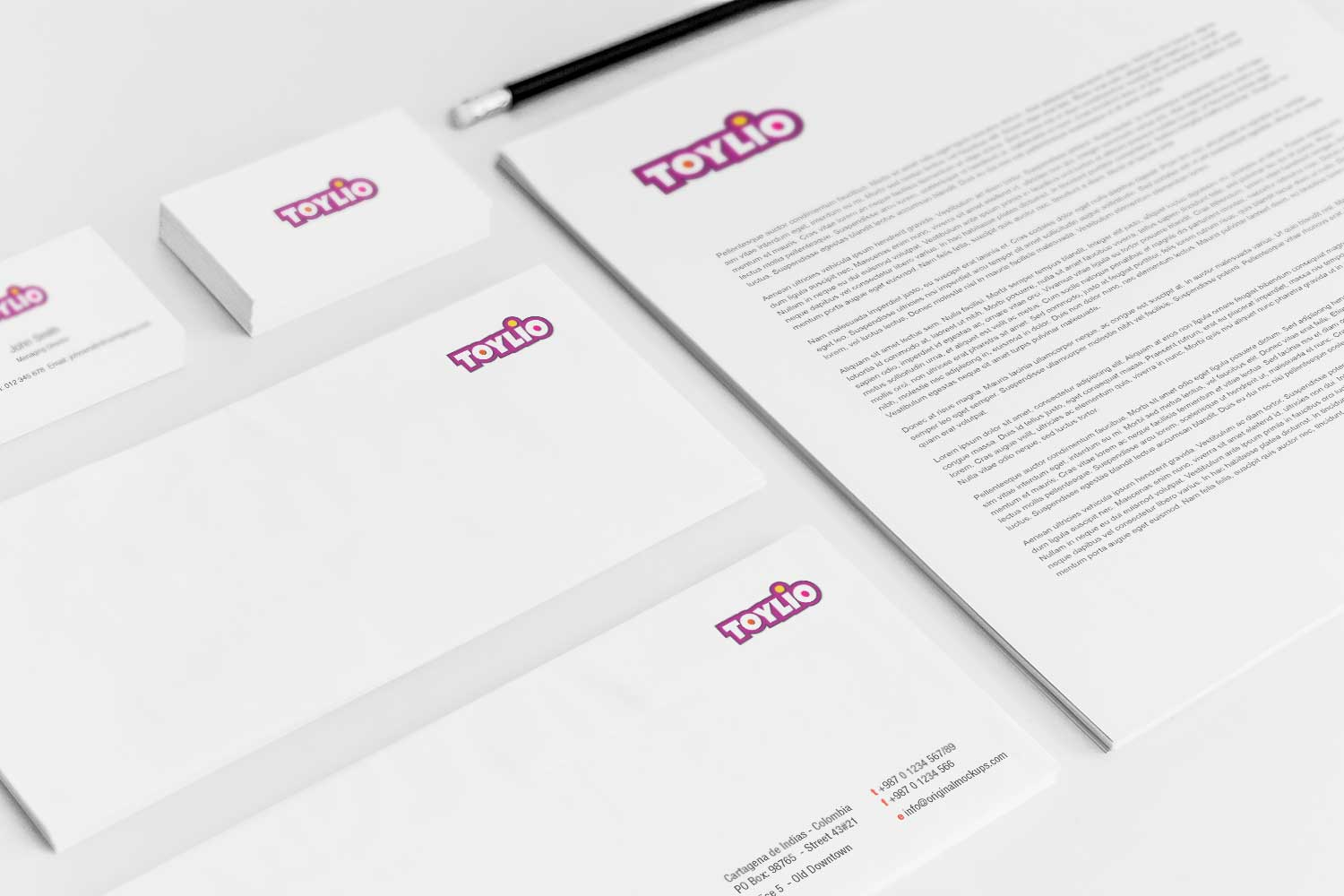 Sample branding #3 for Toylio