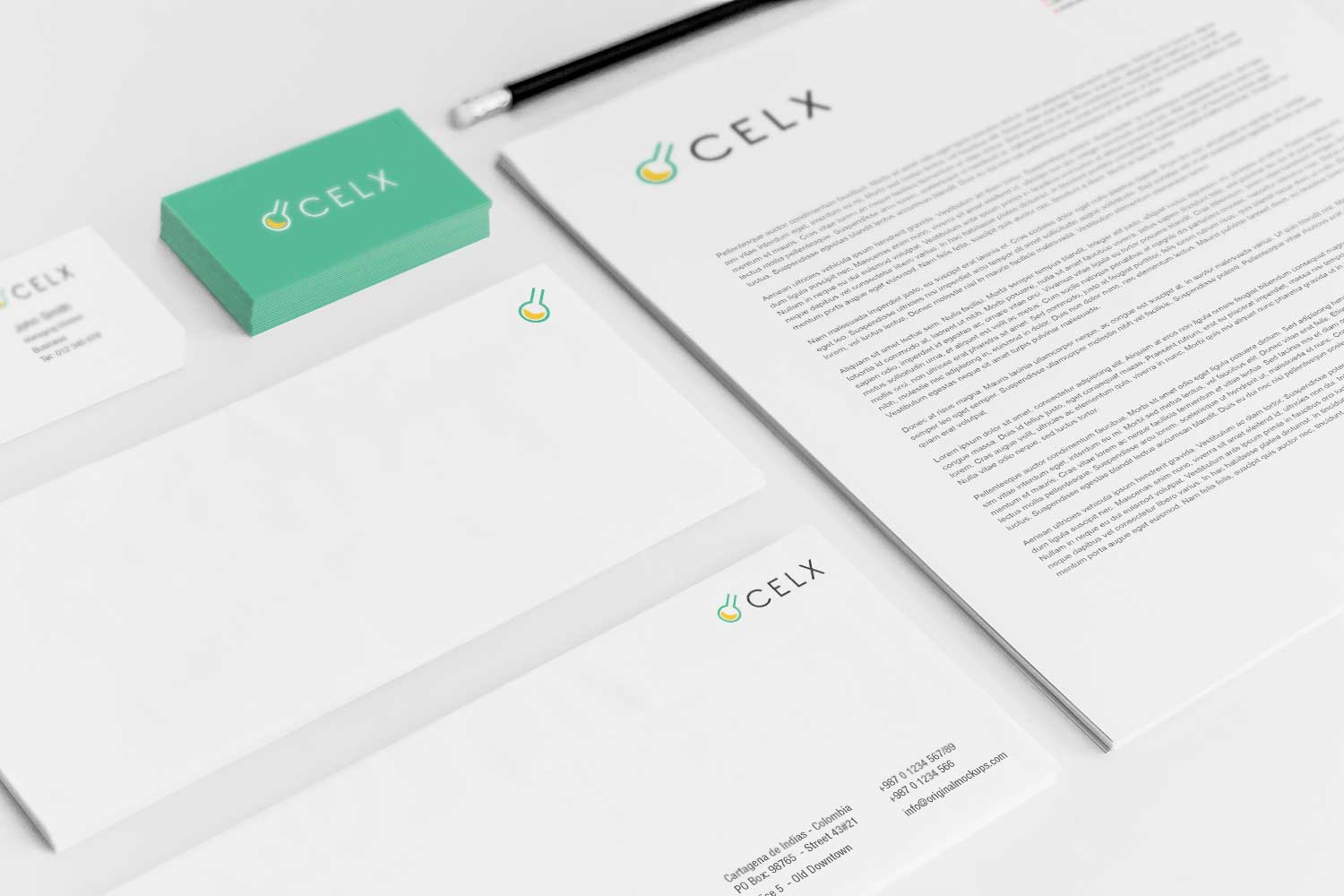 Sample branding #3 for Celx