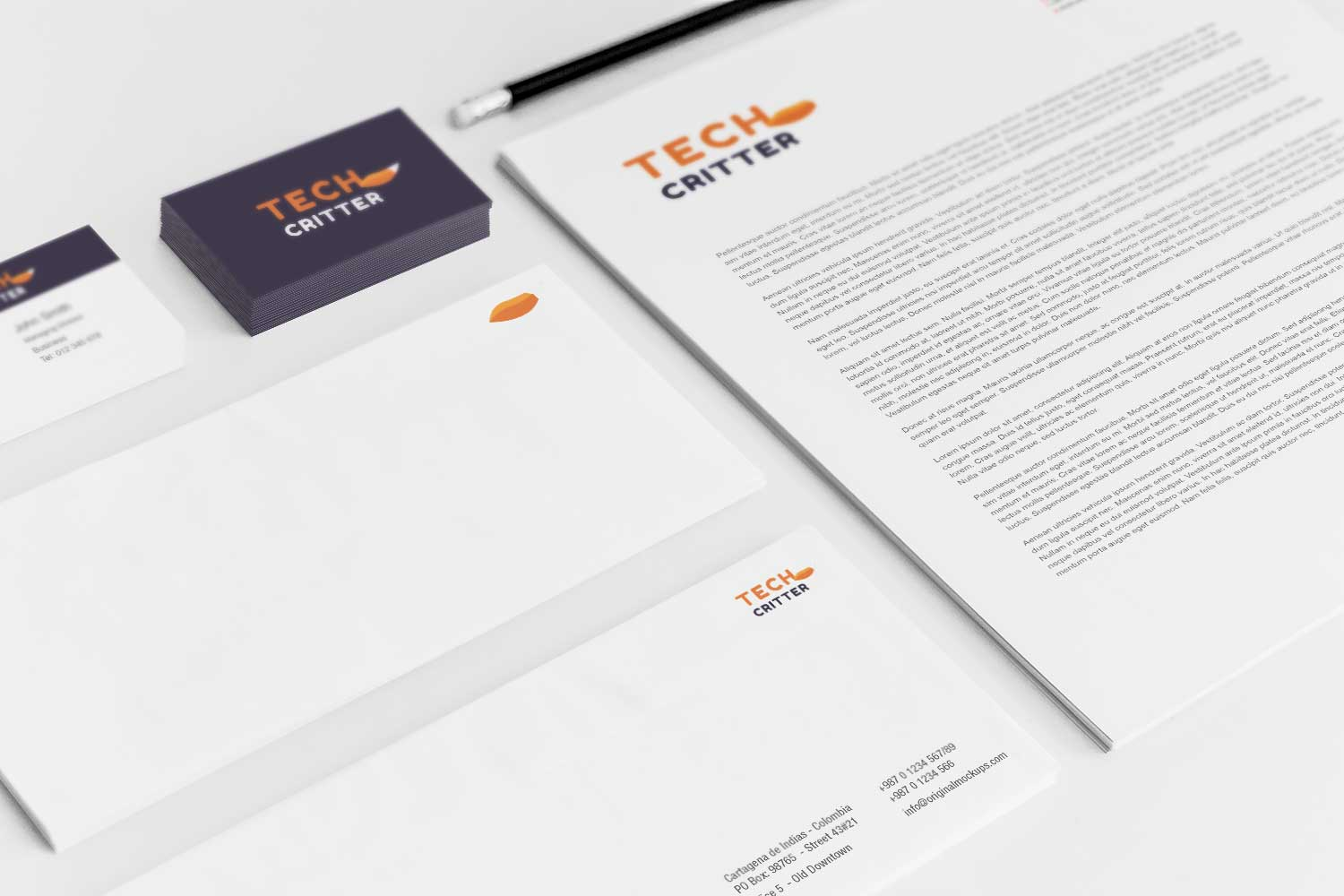 Sample branding #3 for Techcritter