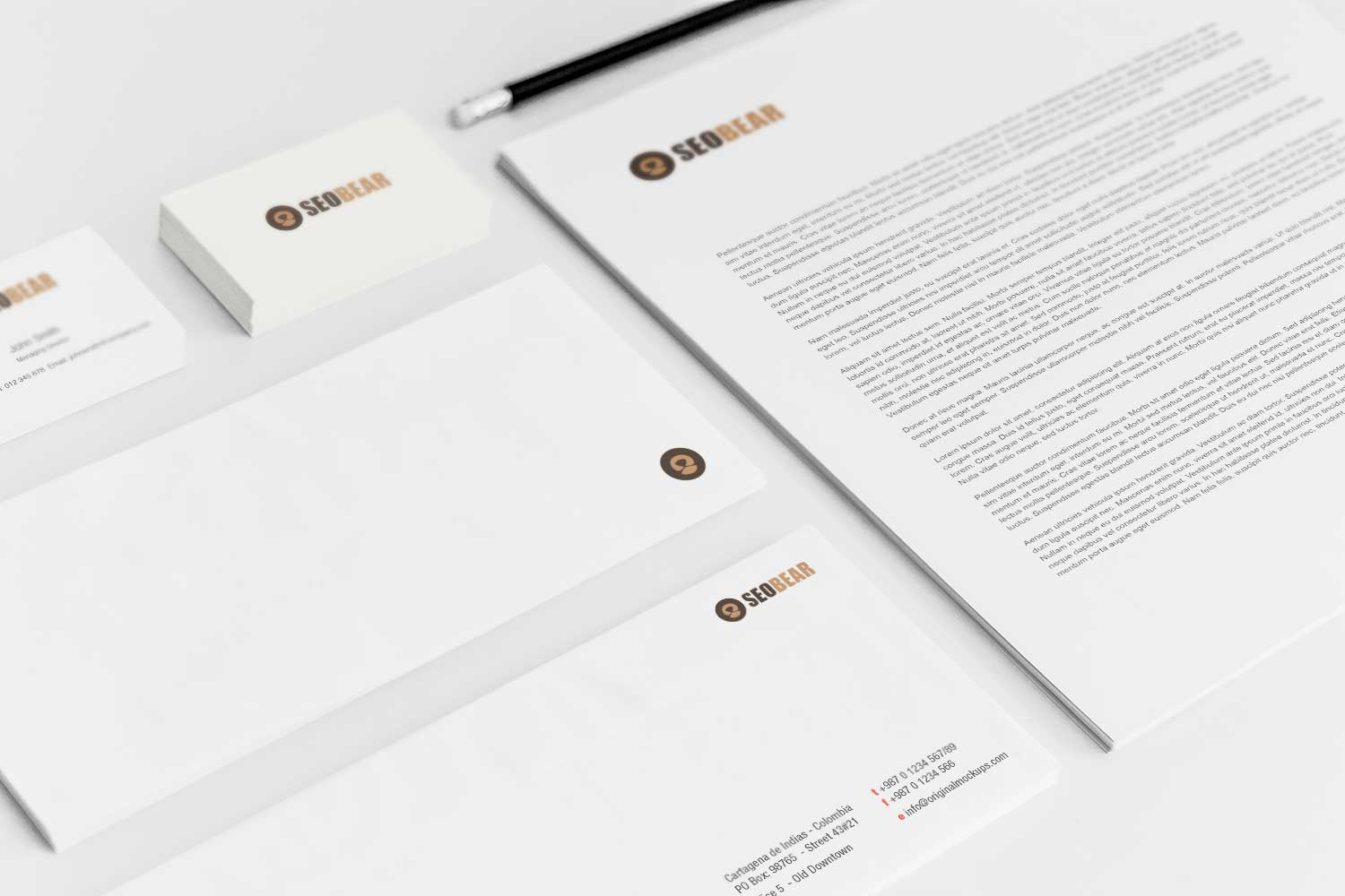 Sample branding #3 for Seobear