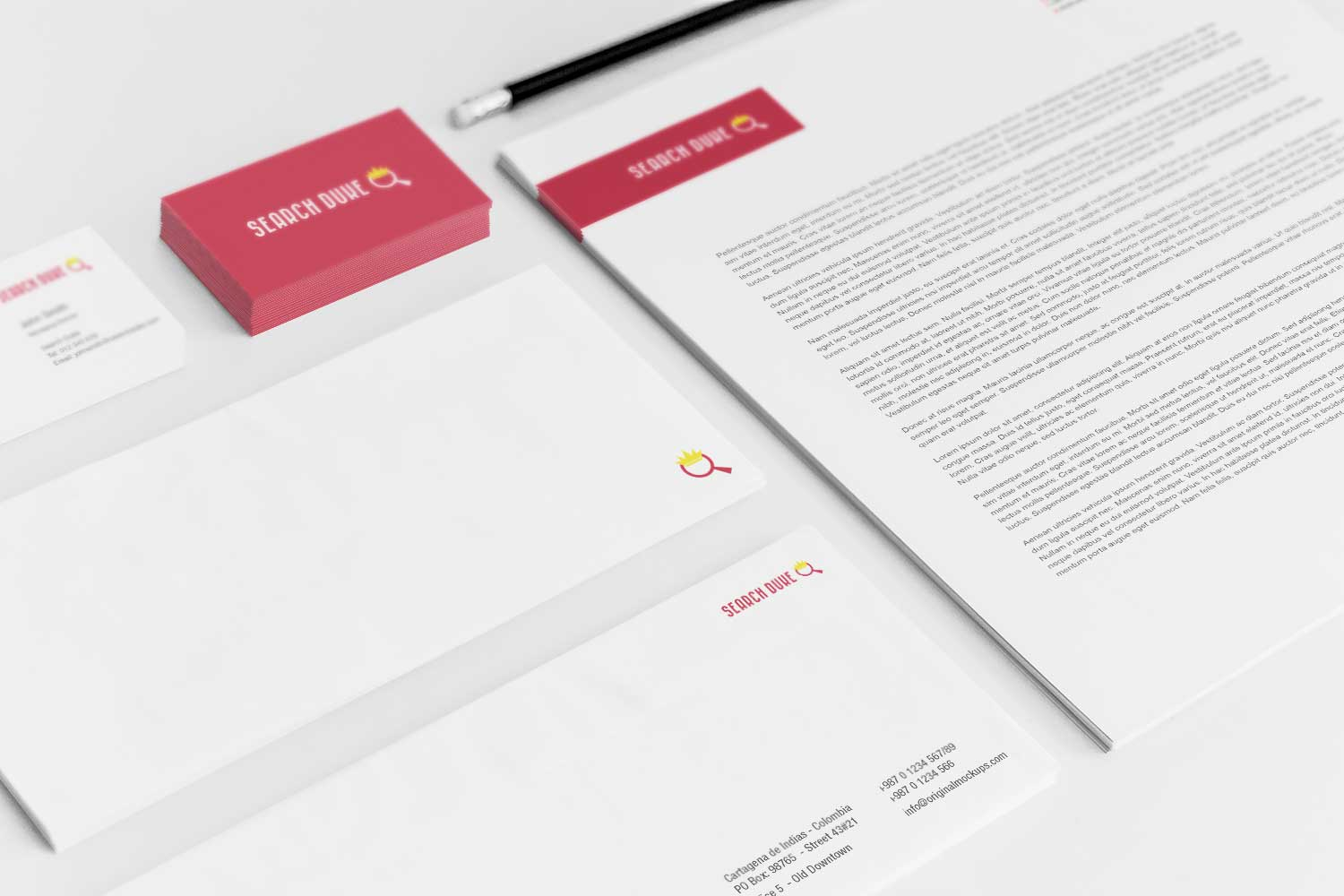 Sample branding #3 for Searchduke