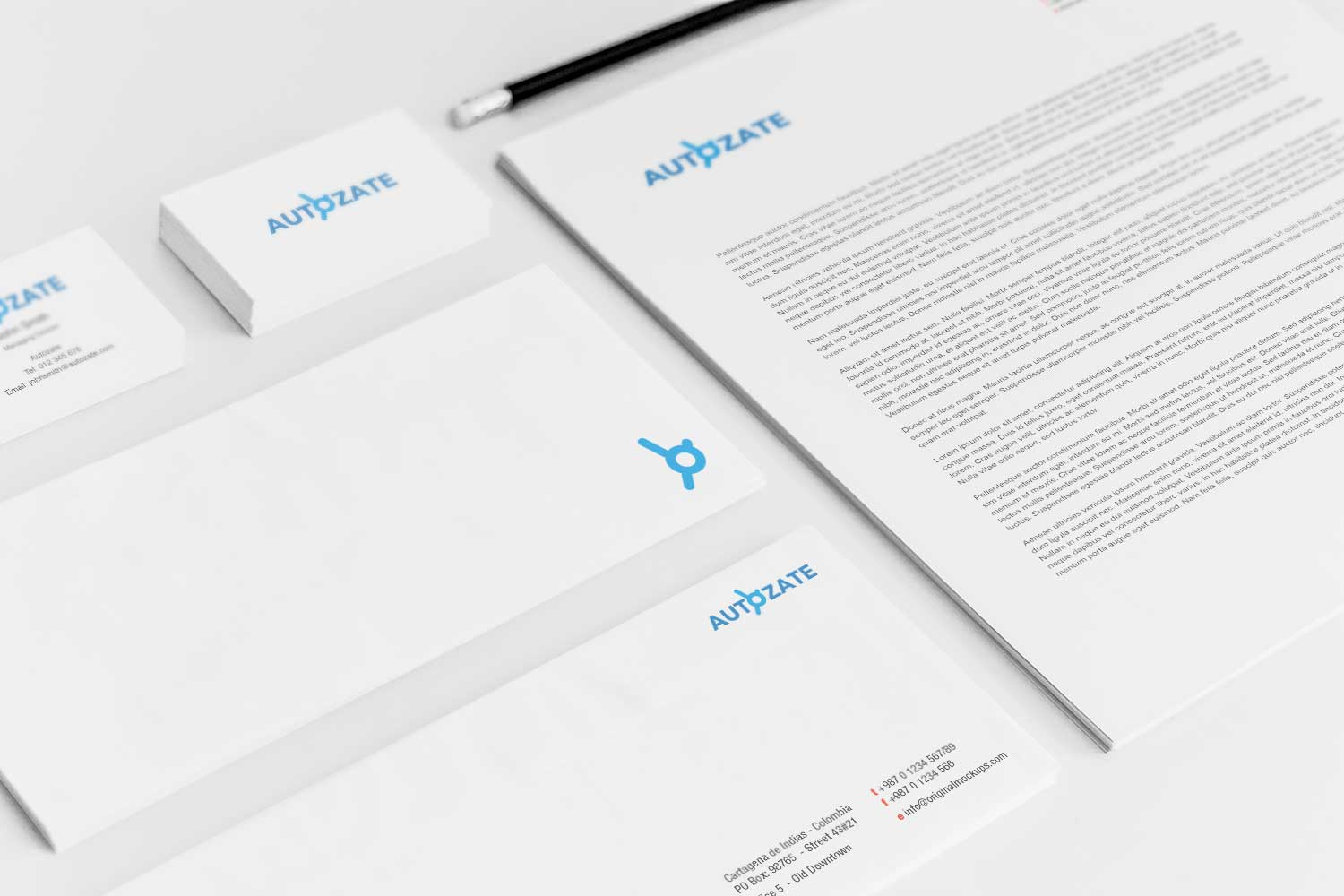Sample branding #3 for Autozate