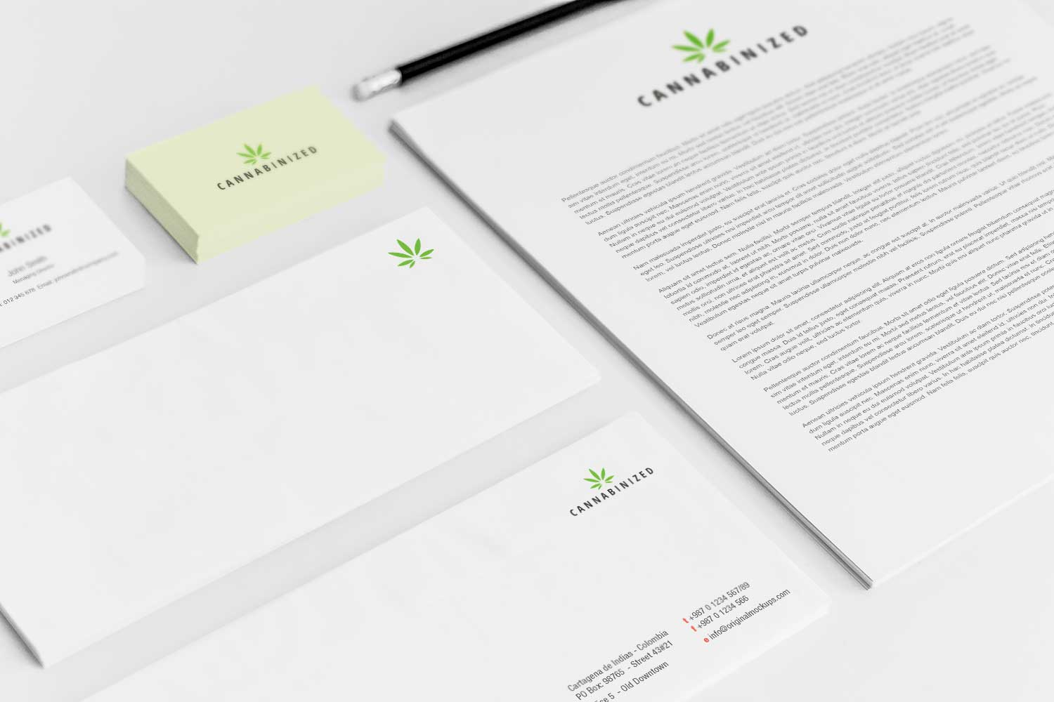Sample branding #3 for Cannabinized
