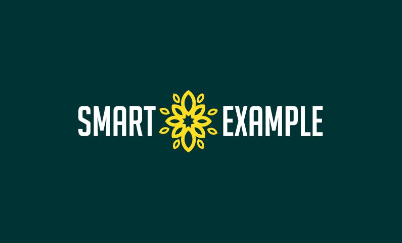 Smartexample