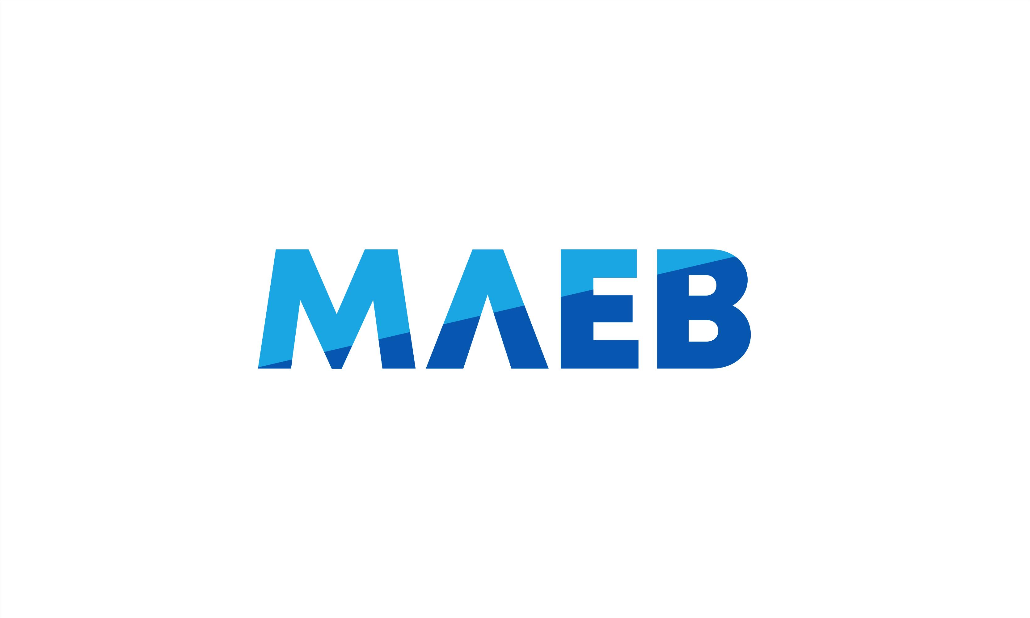 maeb logo