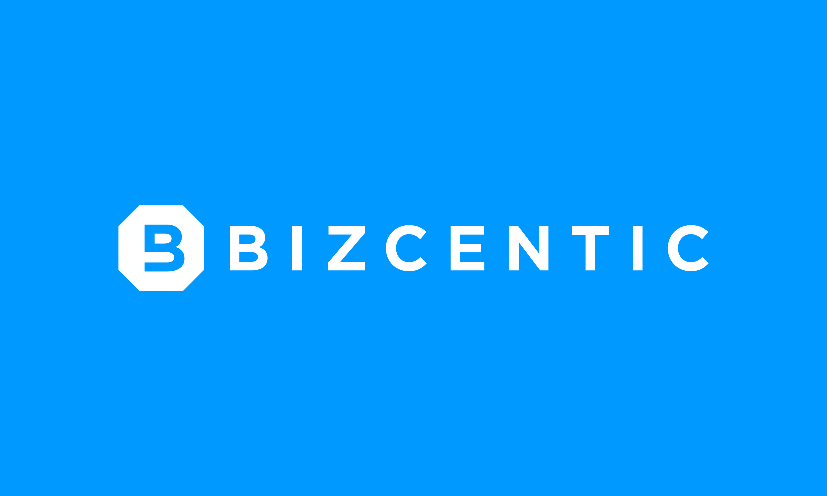 Bizcentic