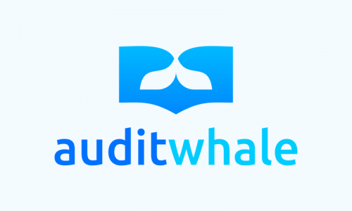 Auditwhale - Contemporary company name for sale