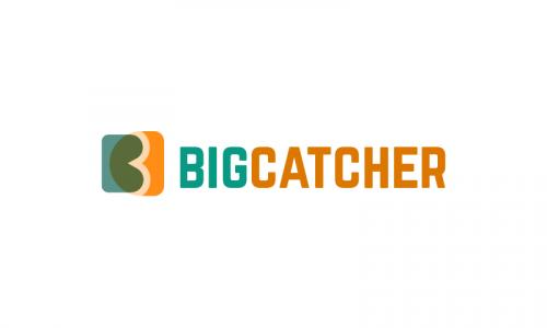 Bigcatcher - E-commerce domain name for sale