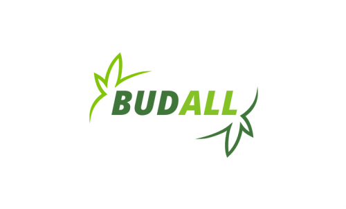 Budall - E-commerce company name for sale