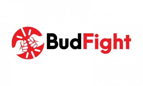 Budfight - E-commerce startup name for sale