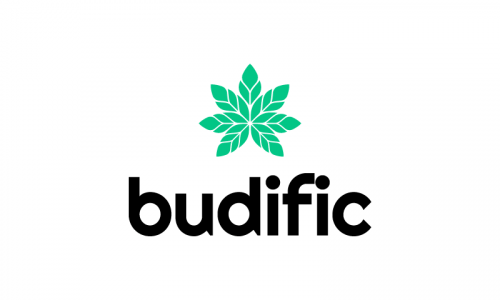 Budific - Retail company name for sale