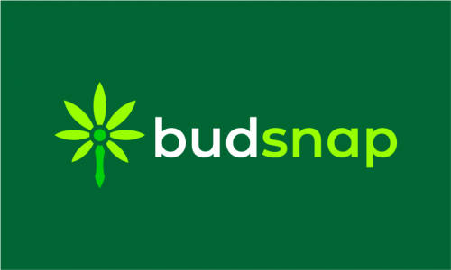 Budsnap - Retail domain name for sale