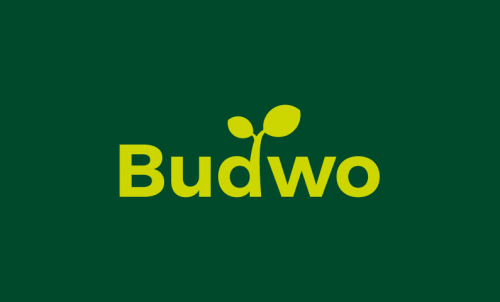 Budwo - E-commerce company name for sale