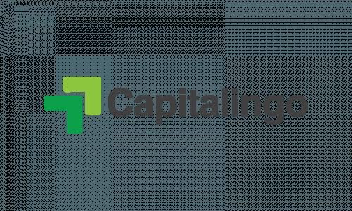 Capitalingo - Venture Capital brand name for sale