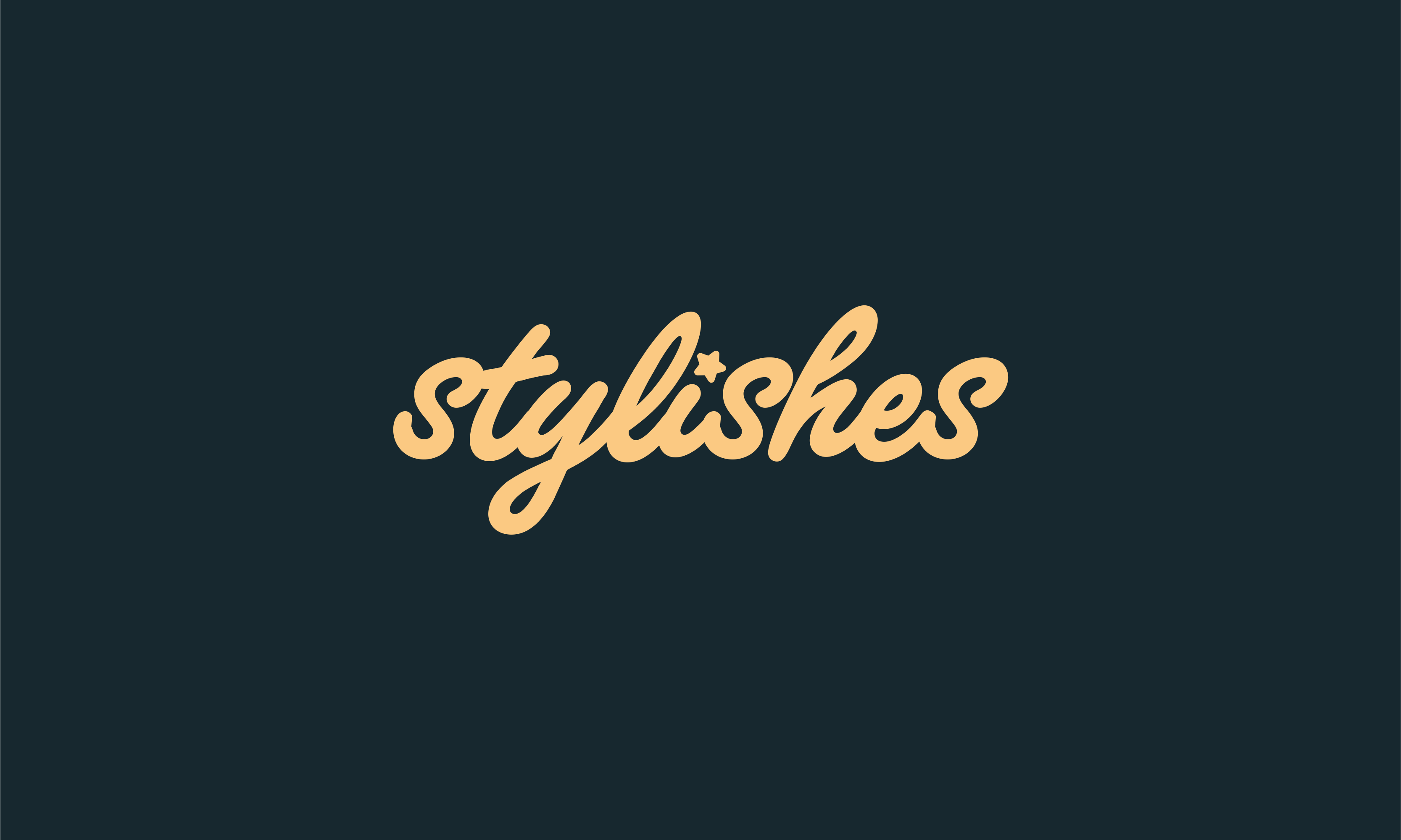 stylishes logo