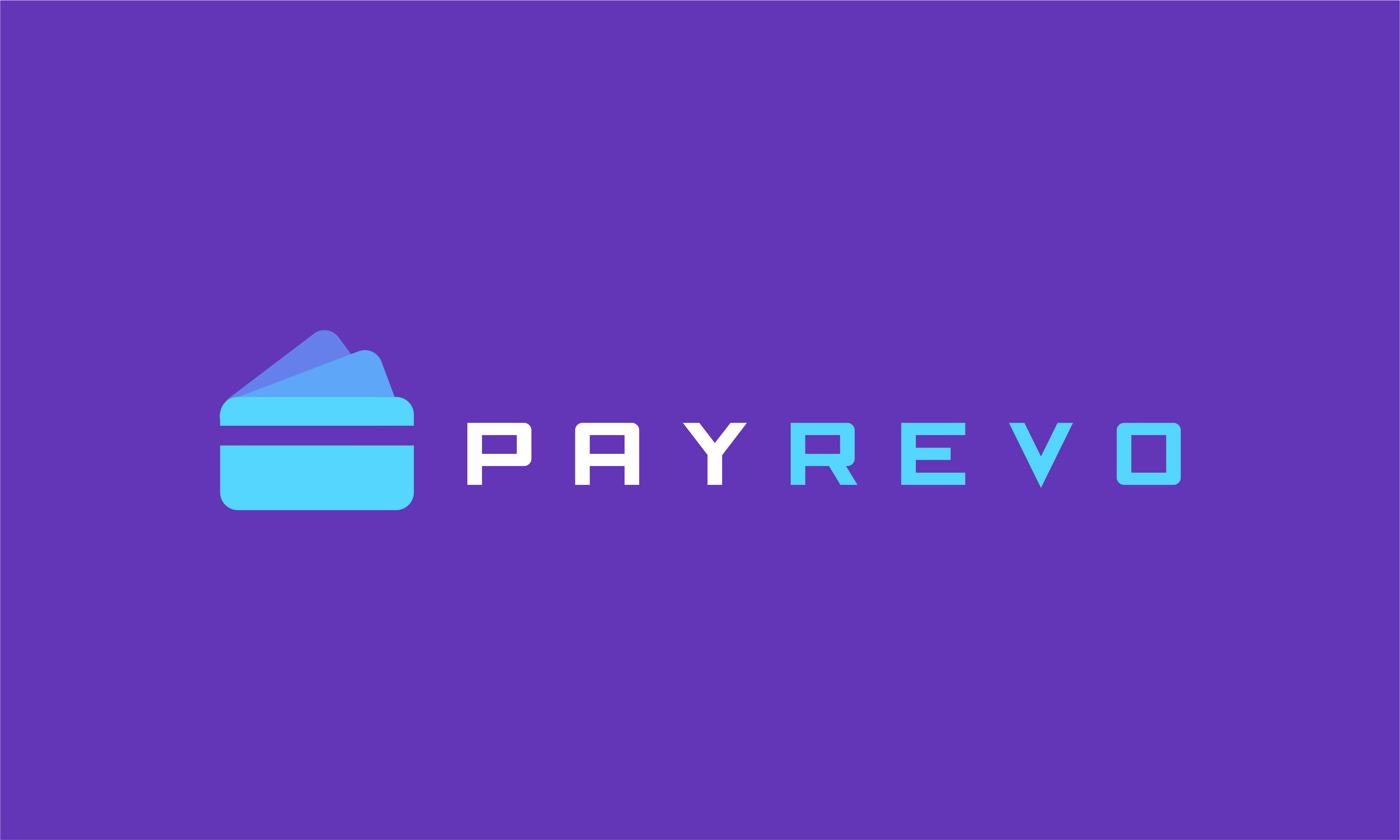Payrevo - Loans brand name for sale