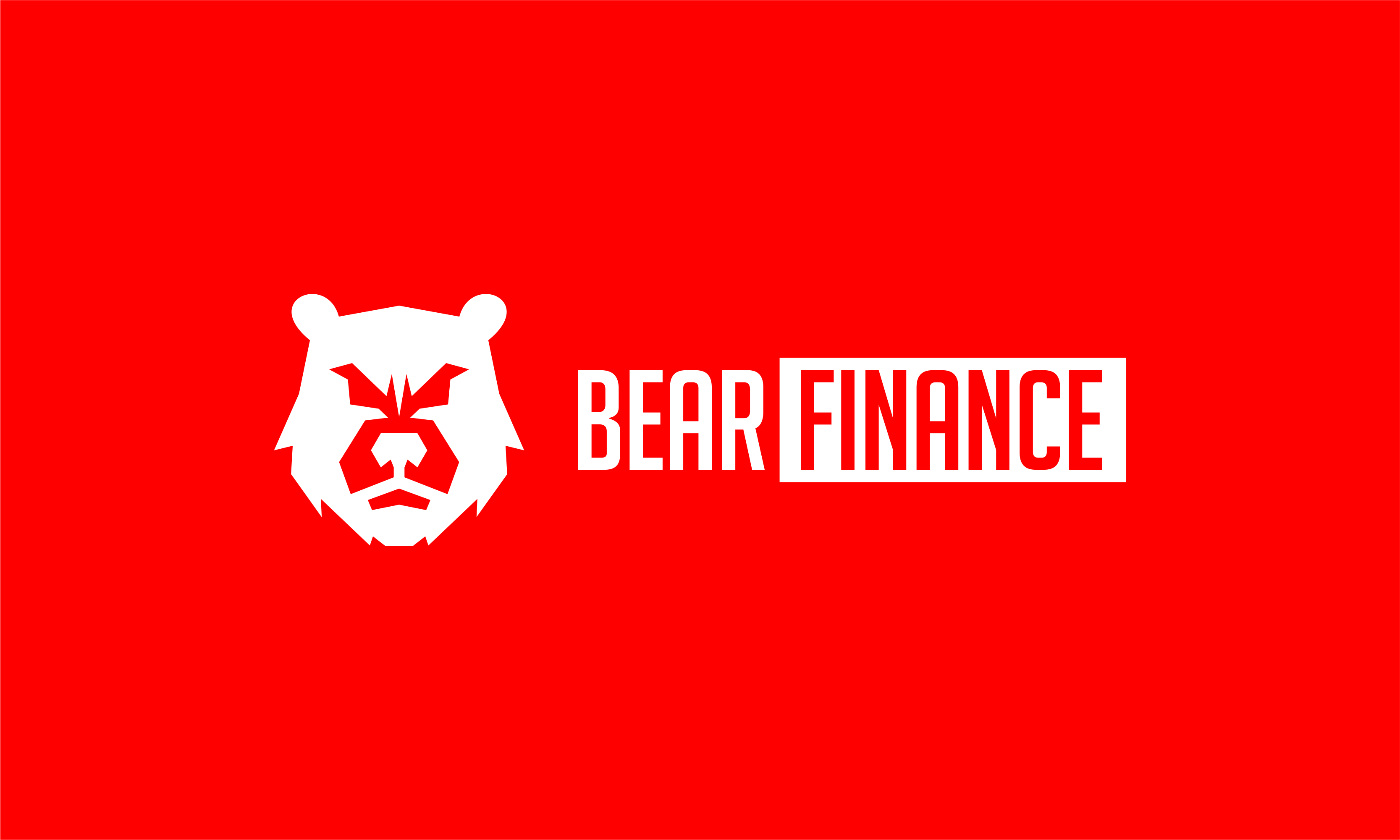 Bearfinance