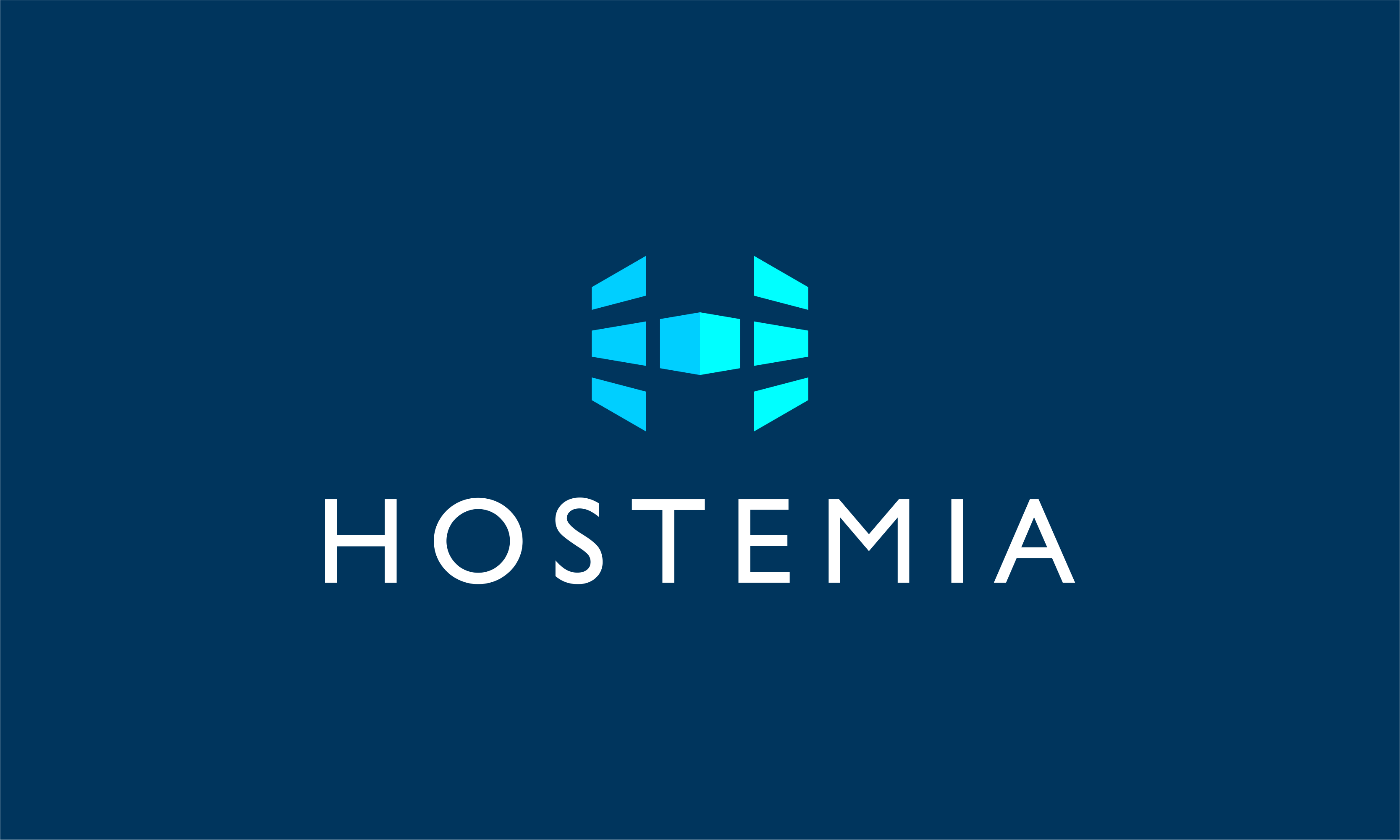 Hostemia - Business business name for sale