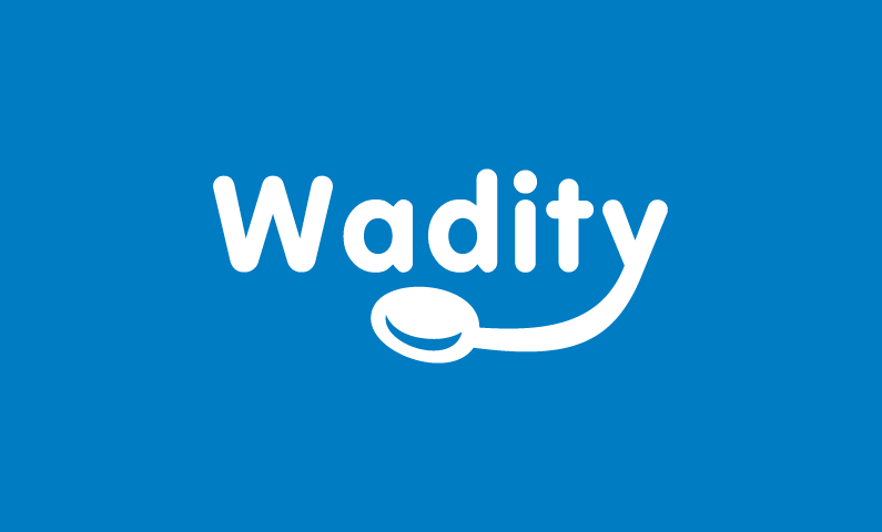 Wadity - Modern company name for sale