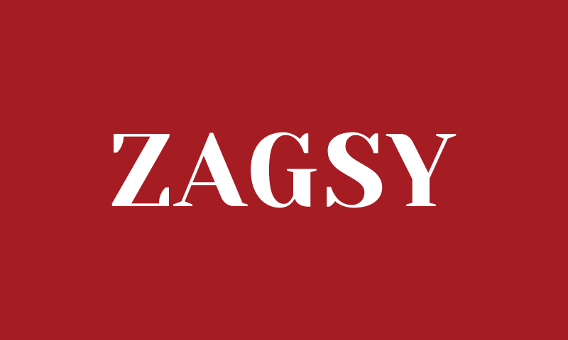Zagsy - Retail business name for sale