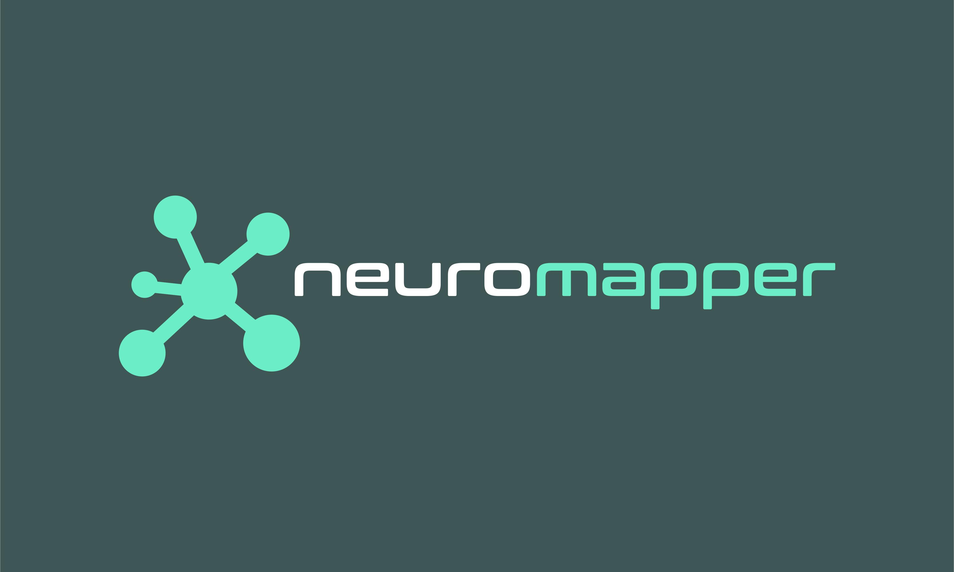 Neuromapper