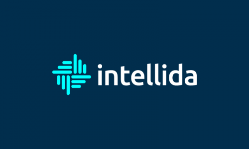 Intellida - Analytics startup name for sale
