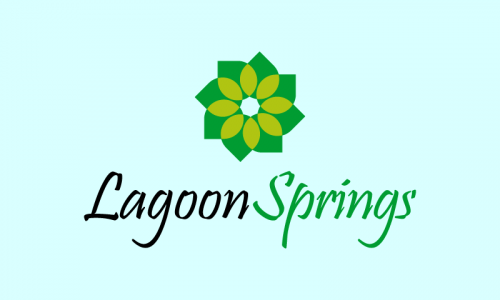 Lagoonsprings - E-commerce domain name for sale
