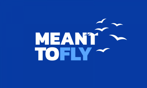Meanttofly - Modern brand name for sale