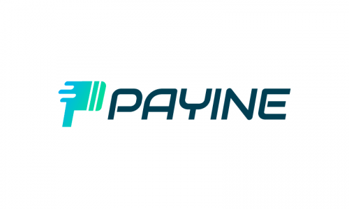 Payine - Payment business name for sale