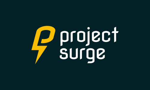 Projectsurge - E-commerce business name for sale