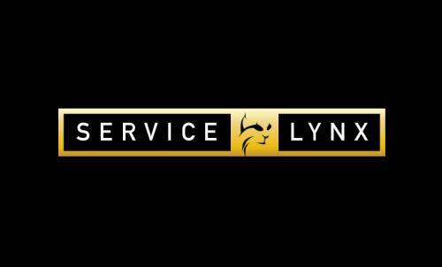Servicelynx - Potential startup name for sale