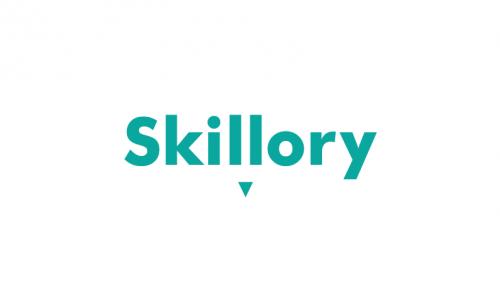 Skillory - A skilful domain name