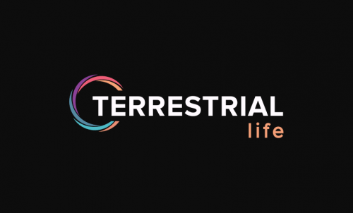 Terrestrial - Technology domain name for sale